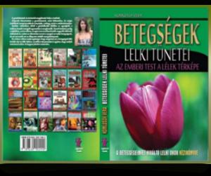 betegseg-book